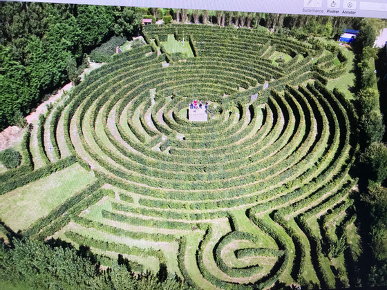 Labyrinthe Artmazia